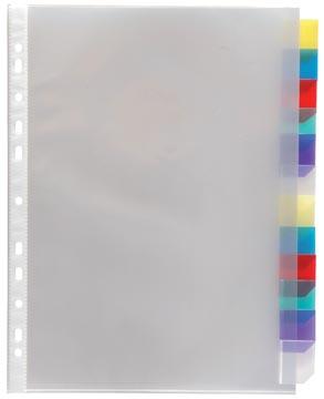 Viquel pochette perforée 12 onglets