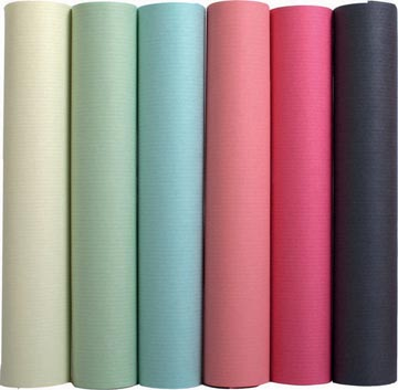 Exacompta papier d'emballage couleurs assorties pastel